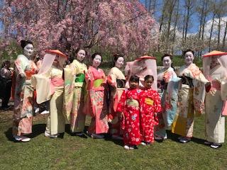 Sakura Matsuri  2018 -1 7